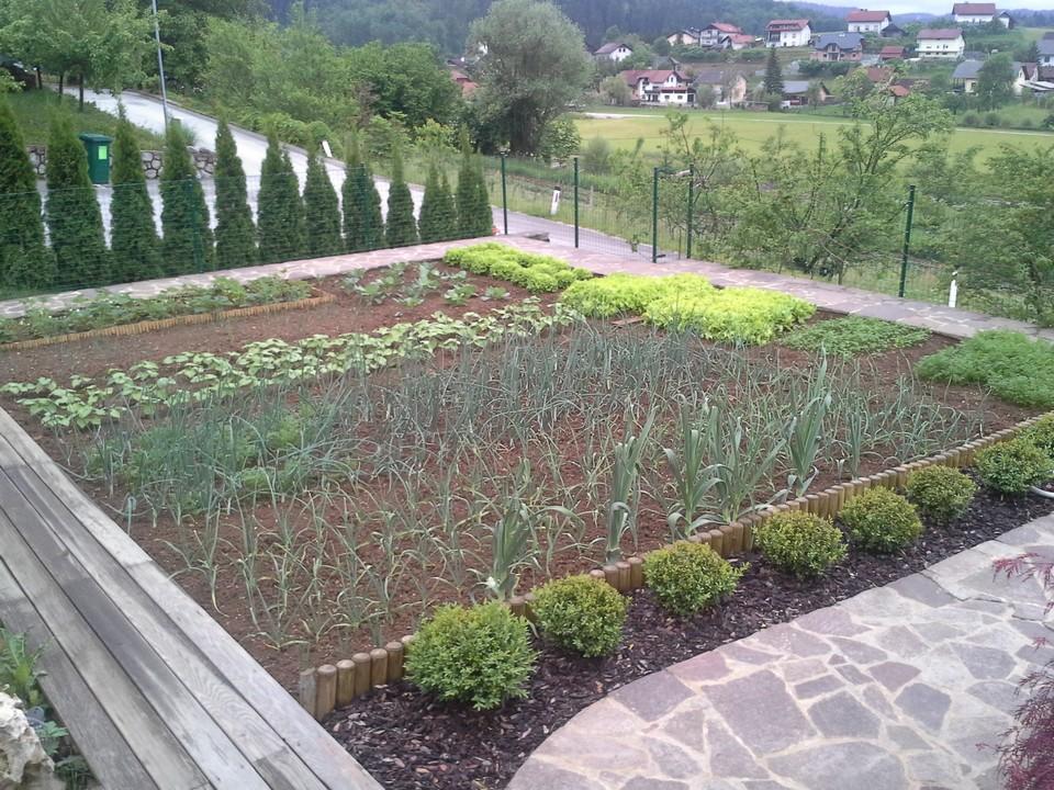 zelenjavni-vrt